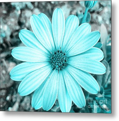 Color Trend Blue Blossom Metal Print