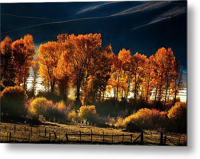 Metal Print featuring the photograph Colorado Autumn Morning by Andrew Soundarajan