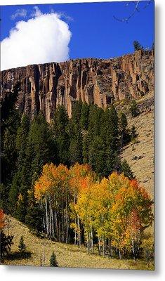 Colorado Fall 4 Metal Print by Marty Koch