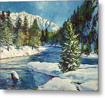 Colorado Pines Metal Print by David Lloyd Glover