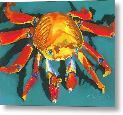 Colorful Crab II Metal Print by Stephen Anderson