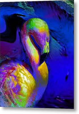 Colorful Flamingo   Metal Print by Doris Wood