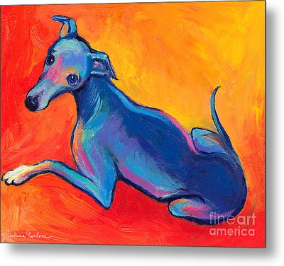 Colorful Greyhound Whippet Dog Painting Metal Print by Svetlana Novikova
