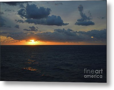 Come Fly With Me Metal Print by Robyn King