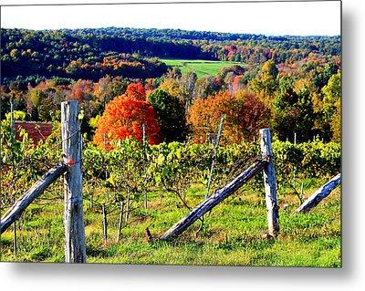 Connecticut Winery Metal Print