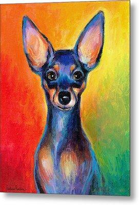 Contemporary Colorful Chihuahua Chiuaua Painting Metal Print by Svetlana Novikova