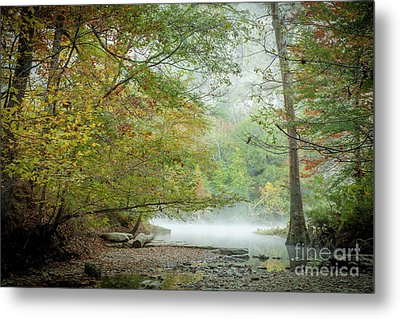 Metal Print featuring the photograph Cool Morning by Iris Greenwell
