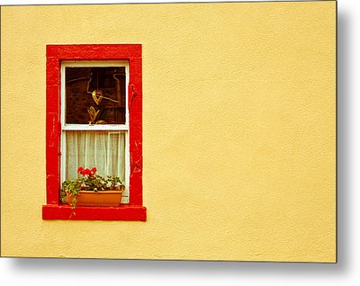 Cottage Window Metal Print by Tom Gowanlock