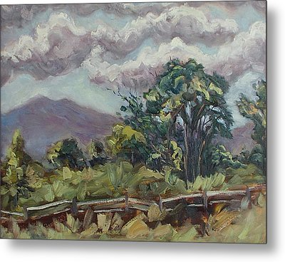Cottonwoods At The Ranch Metal Print by Zanobia Shalks
