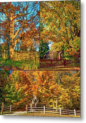 Country Fences Collage - Paint Metal Print