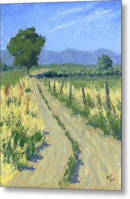 Country Road Metal Print by David King