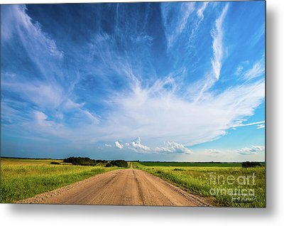 Country Roads IIi - Signed Edition Metal Print by Ian McGregor