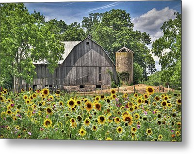 Country Sunflowers Metal Print by Lori Deiter