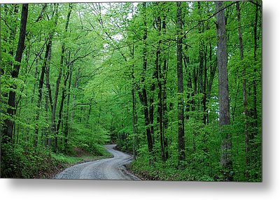 Covered Bridge Road Metal Print by Beverly Cazzell