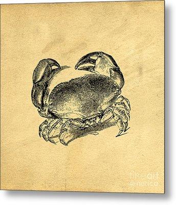 Crab Vintage Metal Print