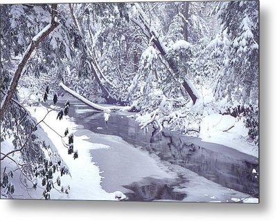 Cranberry River Winter Heavy Snow Metal Print by Thomas R Fletcher