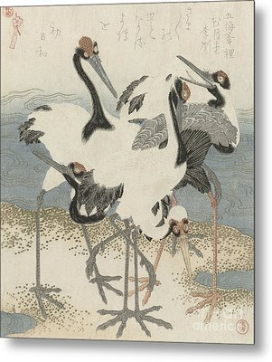 Cranes By The Water Metal Print