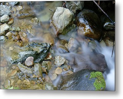 Creek On Mt Tamalpais Metal Print by Ben Upham III