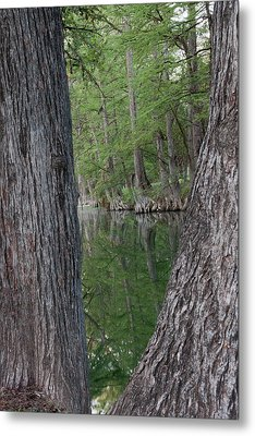 Creek Reflections Metal Print by James Woody