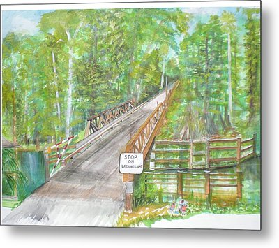 Cross Creek The Forest Metal Print by Hal Newhouser