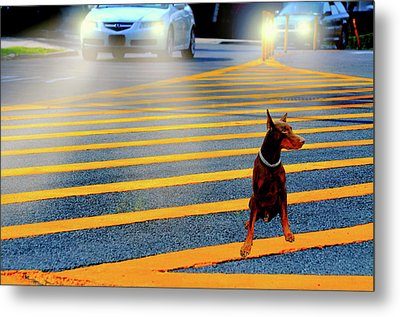Crossing Guard Metal Print by Diana Angstadt