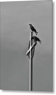 Crows On Steeple Metal Print by Richard Rizzo