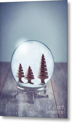 Crystal Globe With Wooden Trees Metal Print