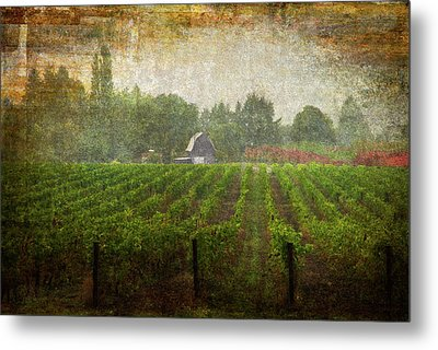 Cultivating A Chardonnay Metal Print by Jeffrey Jensen