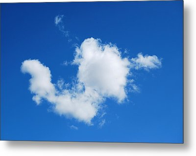 Metal Print featuring the photograph Cumulus by Marilynne Bull