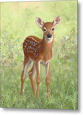 Cute Whitetail Deer Fawn Metal Print