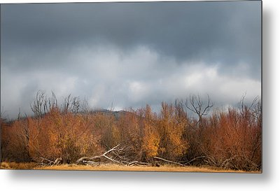 Cuyamaca Autumn Metal Print