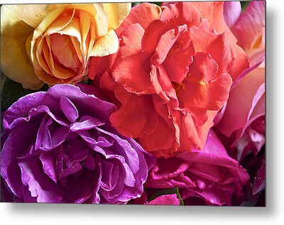 Dad's Roses Metal Print by Gwyn Newcombe
