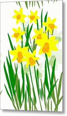 Daffodils Drawing Metal Print by Barbara Moignard