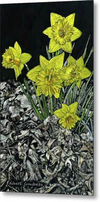 Daffodils Metal Print by Robert Goudreau