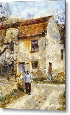 Daily Walk Metal Print by Shirley Stalter