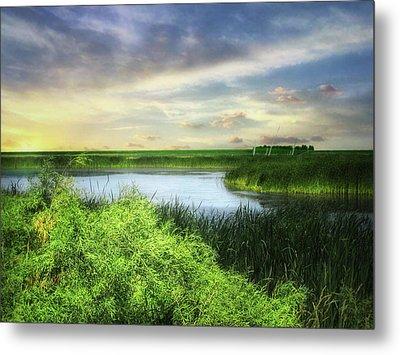 Dakota Wetlands 7 Metal Print