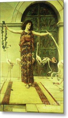 Dance Of The Flamingos Metal Print