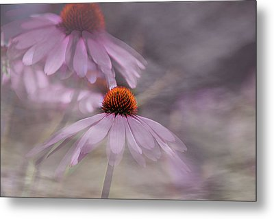 Dancing Cones Metal Print by Gary Smith