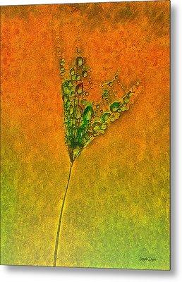 Dandelion Flower - Pa Metal Print by Leonardo Digenio