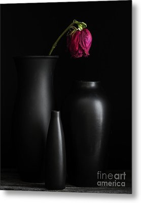 Dark Trio Metal Print