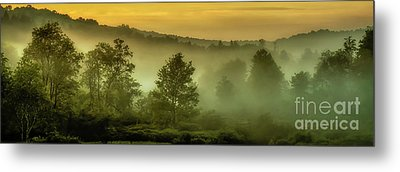 Metal Print featuring the photograph Dawn At Wildlife Management Area by Thomas R Fletcher