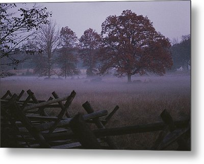 Dawn Mist Hangs Over A Field Bordered Metal Print by Stephen St. John