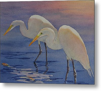 Dawns Early Light Metal Print by Judy Mercer