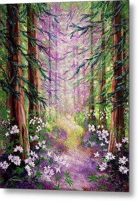 Daybreak In Springtime Redwood Trees Metal Print