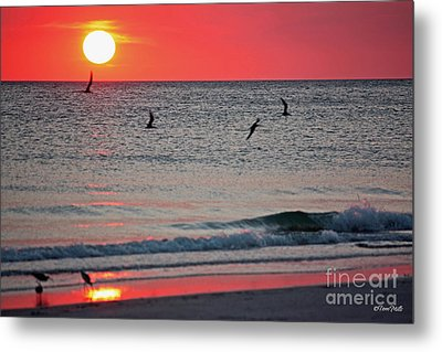 Days End Metal Print by Terri Mills