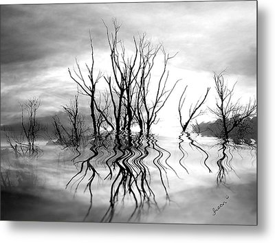 Metal Print featuring the photograph Dead Trees Bw by Susan Kinney