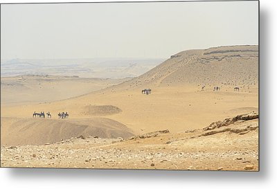 Metal Print featuring the photograph Desert by Silvia Bruno