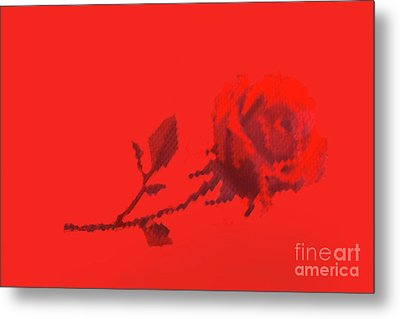 Metal Print featuring the photograph Designer Red Rose by Linda Phelps