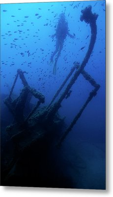 Diver Exploring The Dalton Shipwreck With A School Of Fish Swimming Metal Print by Sami Sarkis