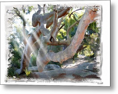 Metal Print featuring the photograph Do-00044 Mount Ettalong by Digital Oil